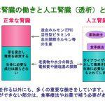 人工腎臓の役割